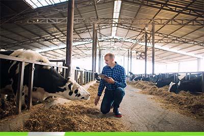 Kredyt obrotowy na działalność rolniczą