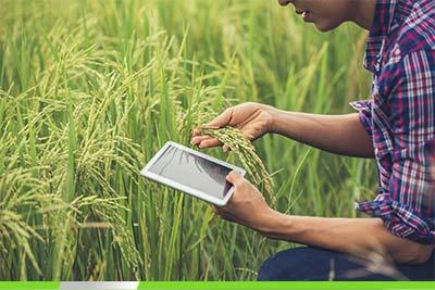 Rolniczy kredyt inwestycyjny